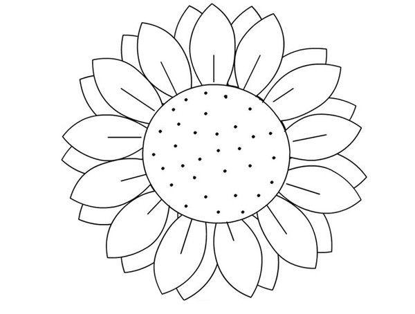 Coloriages fleurs tournesol - Coloriage tournesol ...
