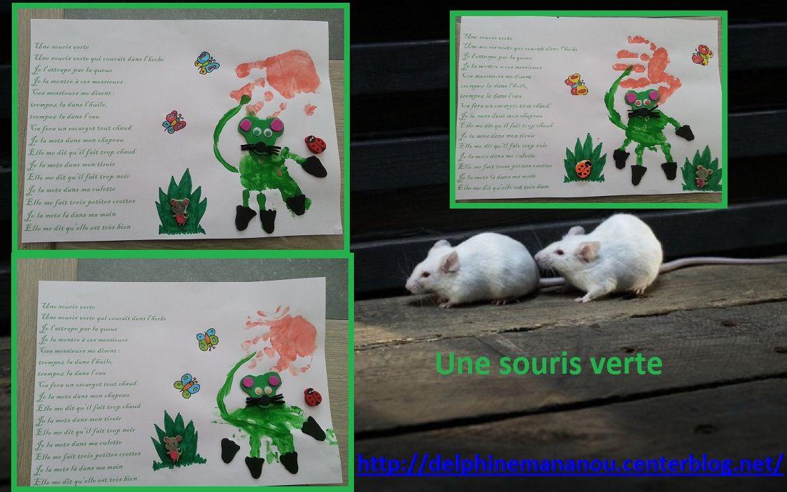 Chansons - Une souris verte singe ...