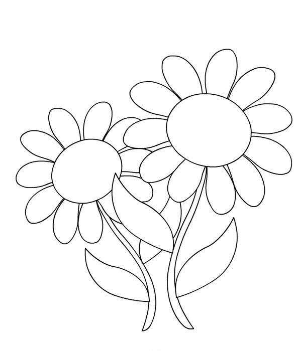 Coloriages fleurs marguerites - Coloriage marguerite ...
